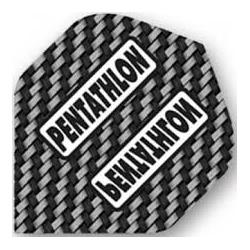 Pentathlon standard grau-weiss